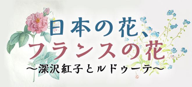 「日本の花、フランスの花~深沢紅子とルドゥーテ~」展